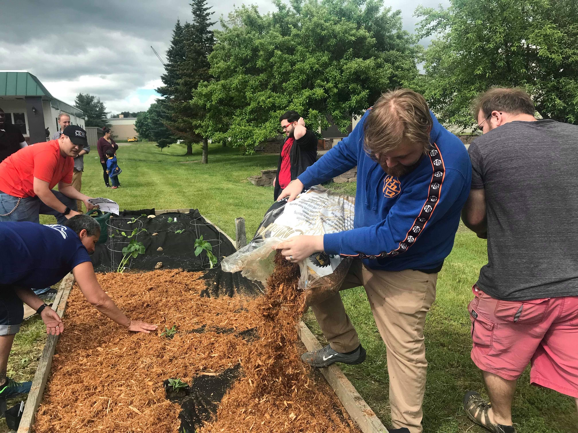 Students and staff at CCV-Morrisville planted a community garden on June 14th.